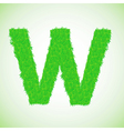 grass letter W vector image vector image