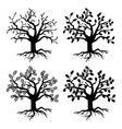 Park old trees tree silhouettes with roots vector image vector image