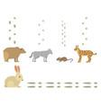 animal footprints include mammals and birds foot vector image vector image