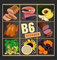 b6 vitamin image vector image