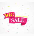 big sale banner with confetti vector image vector image