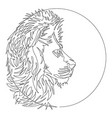 black and white lion one line icon vector image