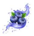 blueberry in juice splash pure vector image vector image