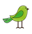 cute scribble bird cartoon vector image