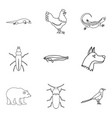 mammal icons set outline style vector image vector image