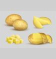 potatoes realistic fresh natural eco vegetarian vector image vector image