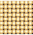 Rattan Seamless Texture vector image vector image