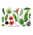 set of realistic tropical flowers and leaves vector image vector image