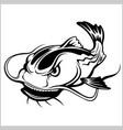 cartoon catfish isolated vector image