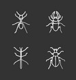 insects chalk icons set vector image