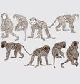 Monochrome monkey style mehendi vector image vector image