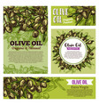 olive oil labels with fruits and green branches vector image vector image