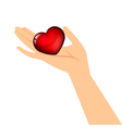 hand holding the heart vector image