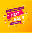 bright modern hot sale banner for advertising vector image