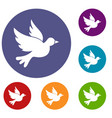 dove icons set vector image vector image