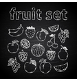Fruit set on a chalk board vector image vector image