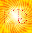 Golden ratio figure on textured sunray background vector image vector image