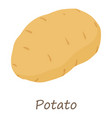 potato icon isometric style vector image