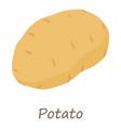 potato icon isometric style vector image vector image