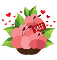 sale bouquet flowers colored for design vector image vector image