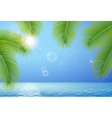 Sunny blue sky sea and palm branches vector image vector image