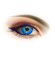 female blue eye vector image