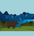 canadian landscape with grizzly bear scene vector image vector image