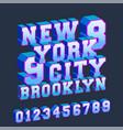 new york brooklyn 3d design typography vector image vector image