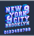 new york brooklyn 3d design typography with vector image vector image