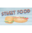 Street food vector image