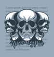 three skulls looking in different directions on a vector image vector image