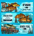 fresh fish sketch banners for market vector image vector image
