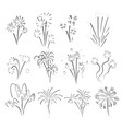 hand drawn set of fireworks vector image vector image