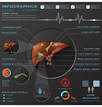 Liver And Gallbladder Medical Infographic vector image vector image