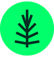pine tree lineart logo simple icon line flat vector image