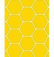 Sweet Honey Background vector image