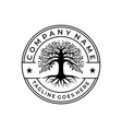 tree life stamp seal emblem oak banyan logo vector image vector image