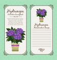 vintage label with hydrangea plant vector image