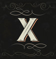 retro style western letter design letter x vector image