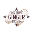 100 percent organic ginger root label for all vector image