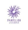 concept logo dandelion with lavender vector image vector image