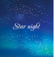 decorative star night background vector image vector image