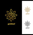 golden floral leaves logo design template sign vector image vector image