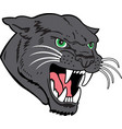 panther head logo mascot vector image vector image