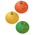 apples with a heart vector image vector image