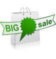 BIG sale green symbol vector image vector image
