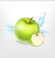 green apple with water splash vector image
