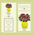 greeting card with coleus plant vector image vector image