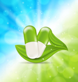 Natural Medical Pills with Green Leaves vector image vector image