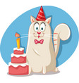 party cat with birthday red velvet cake cartoon vector image